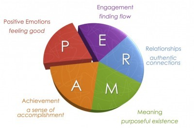 The Launchpad Positive Psychology Quest Our Heros Journey